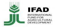 logo-ifad